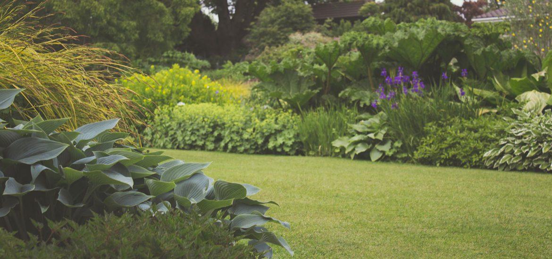 nawozy ogrodnicze